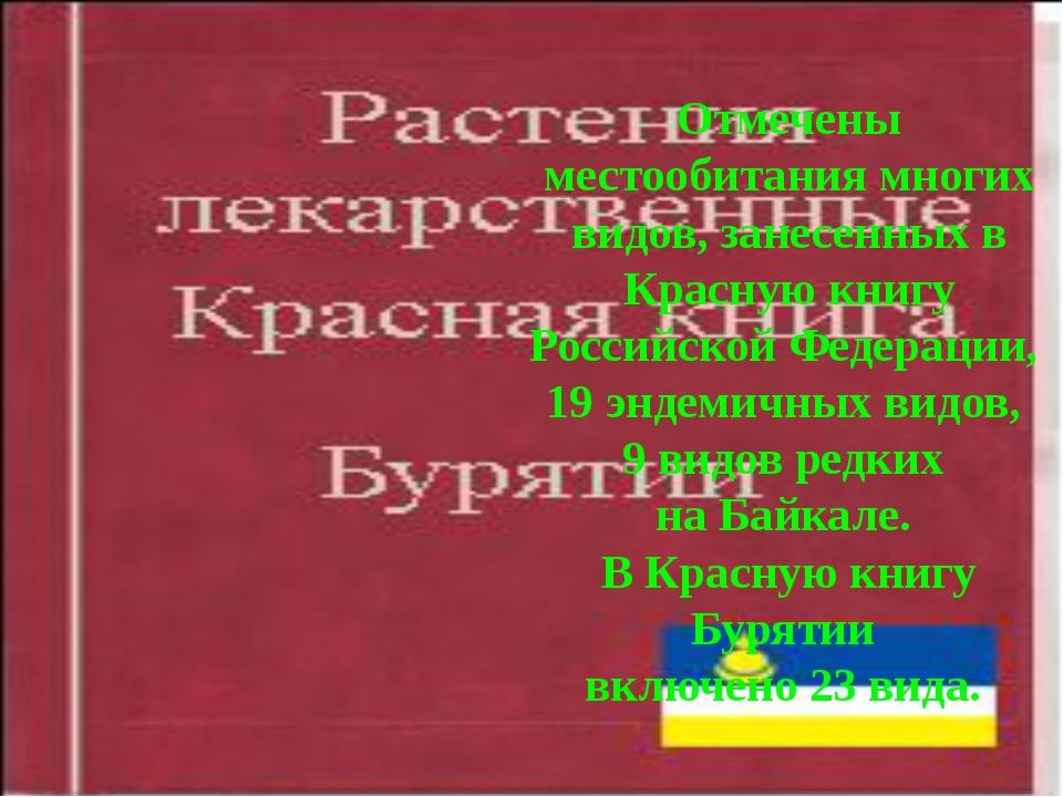 Отмечены местообитания многих видов, занесенных в Красную книгу Российской Фе...
