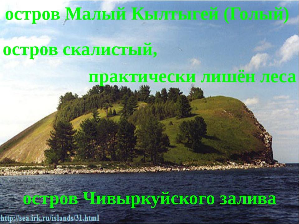 остров Малый Кылтыгей (Голый) остров Чивыркуйского залива остров скалистый, п...