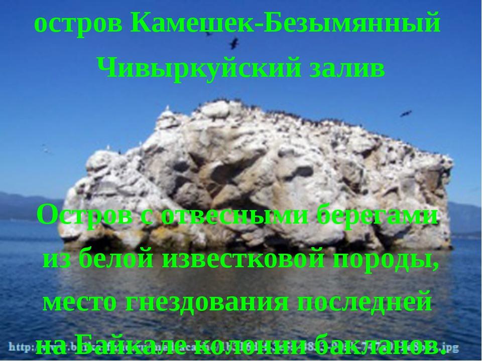 остров Камешек-Безымянный Чивыркуйский залив Остров с отвесными берегами из б...
