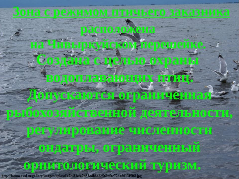 Зона с режимом птичьего заказника  Создана с целью охраны водоплавающих птиц...
