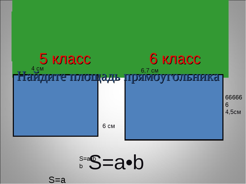 5 класс 6 класс Найдите площадь прямоугольника 4 см 6 см 6,7 см 666666 4,5см...