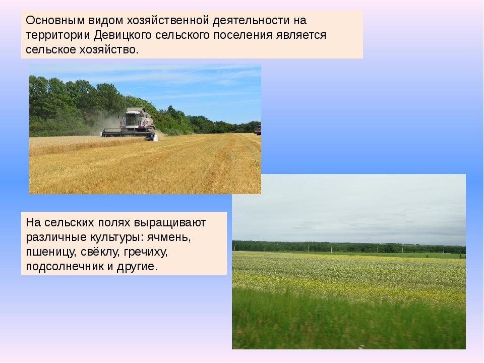 Основным видом хозяйственной деятельности на территории Девицкого сельского п...