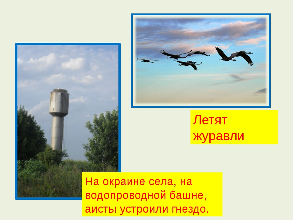 На окраине села, на водопроводной башне, аисты устроили гнездо. Летят журавли