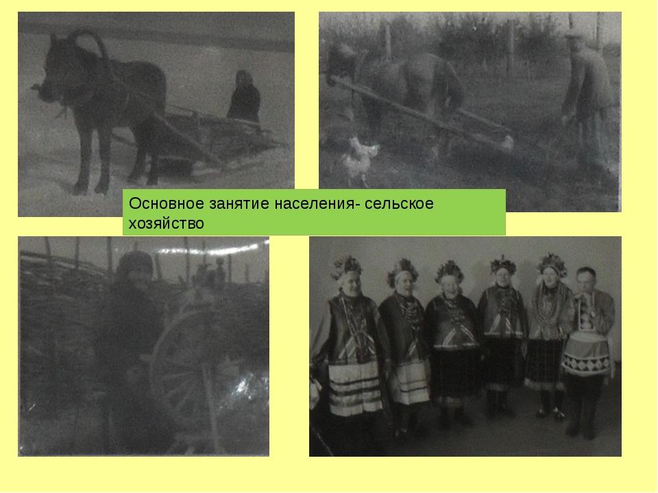 Основное занятие населения- сельское хозяйство
