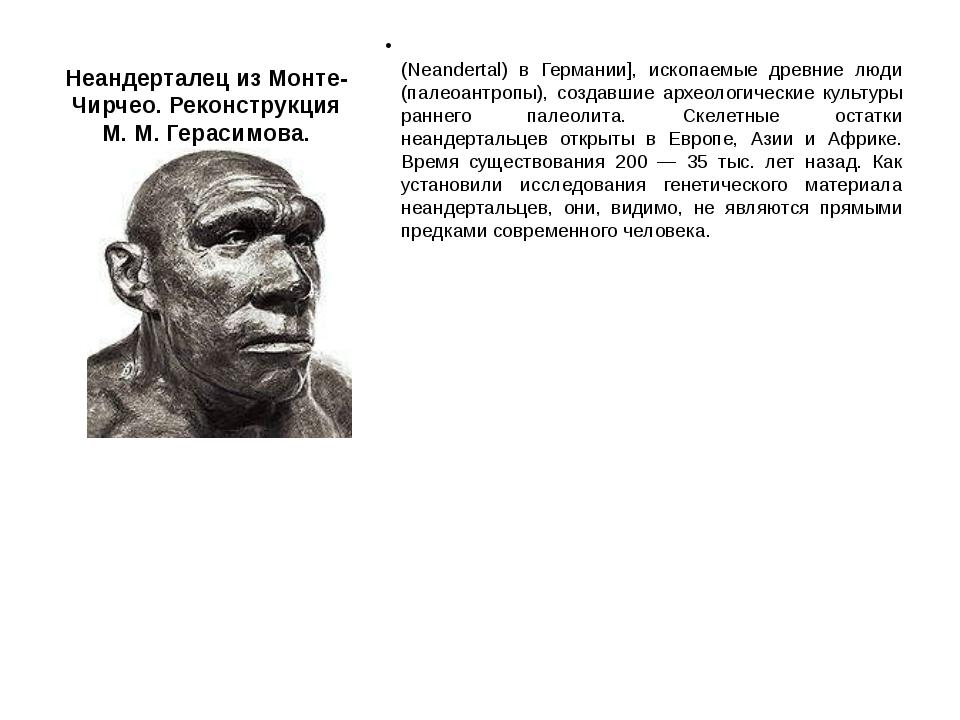 Неандерталец из Монте-Чирчео. Реконструкция М. М. Герасимова. Неандерта́льцы...