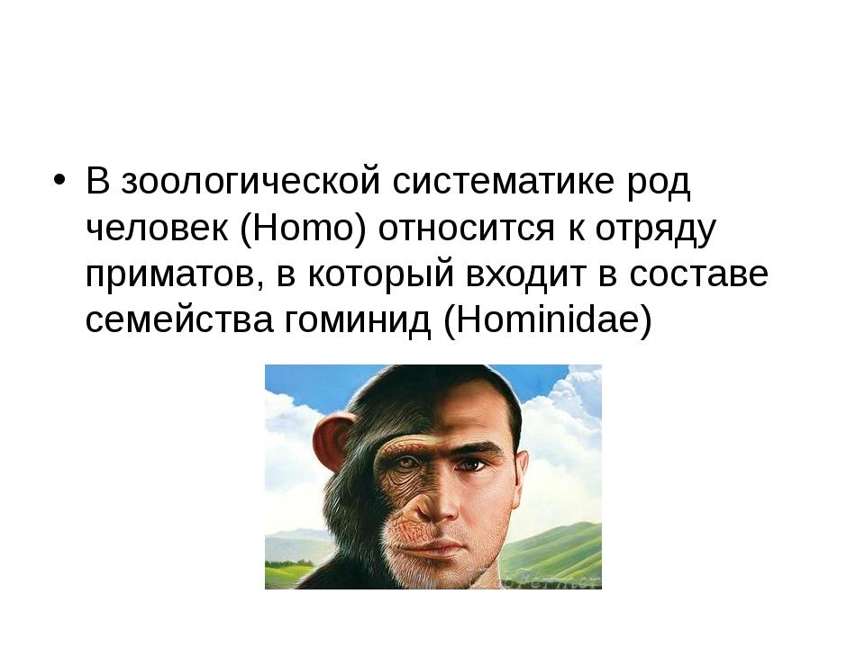 В зоологической систематике род человек (Homo) относится к отряду приматов, в...