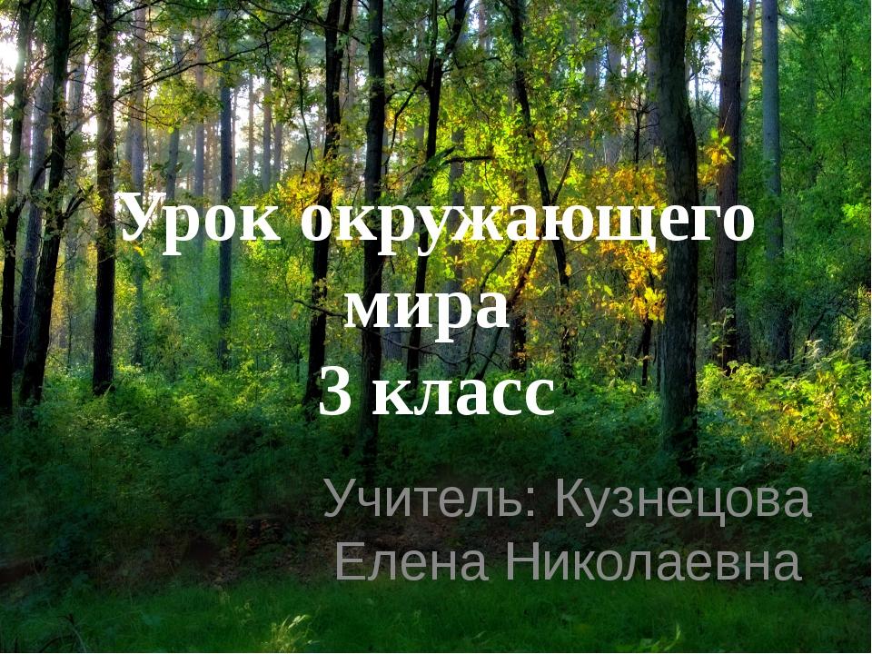 Урок окружающего мира 3 класс Учитель: Кузнецова Елена Николаевна