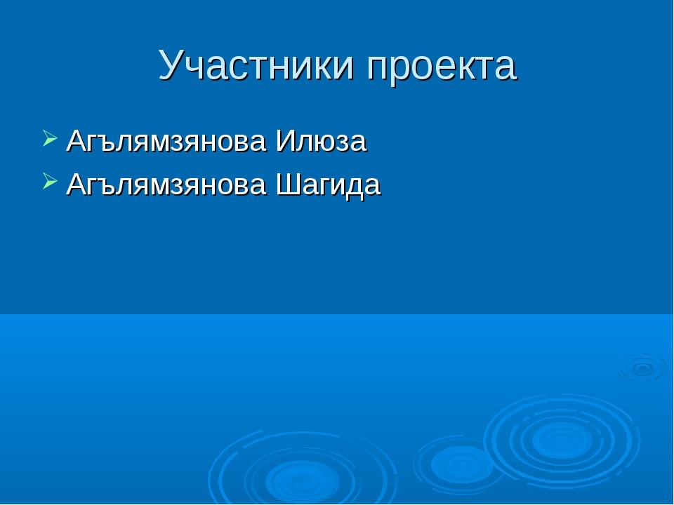 Участники проекта Агълямзянова Илюза Агълямзянова Шагида