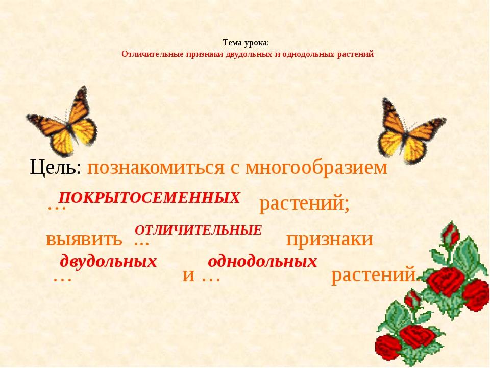 Тема урока: Отличительные признаки двудольных и однодольных растений Цель: п...