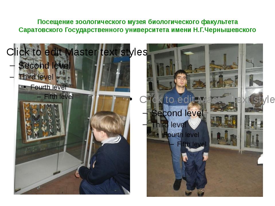 Посещение зоологического музея биологического факультета Саратовского Государ...