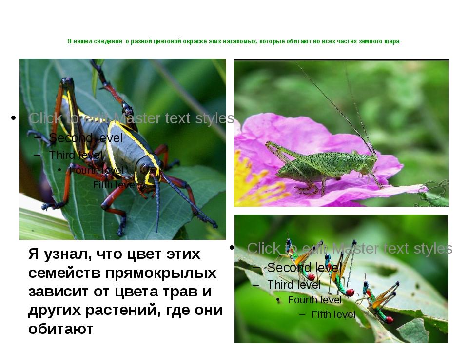 Я нашел сведения о разной цветовой окраске этих насекомых, которые обитают во...