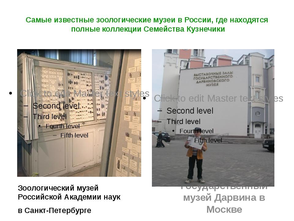 Самые известные зоологические музеи в России, где находятся полные коллекции...