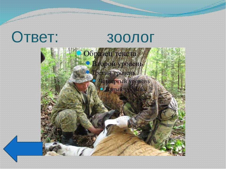 Ответ: Егор Иванович Спорышев
