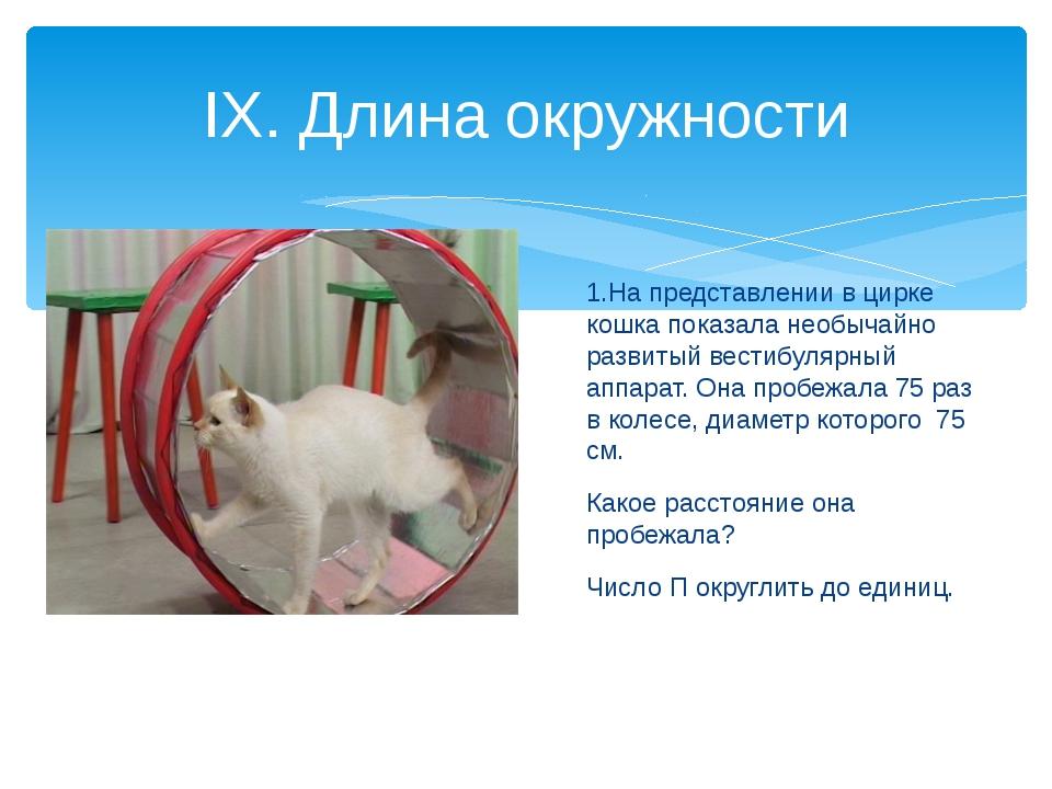 1.На представлении в цирке кошка показала необычайно развитый вестибулярный а...