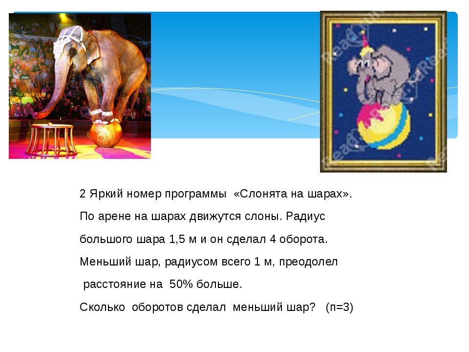 2 Яркий номер программы «Слонята на шарах». По арене на шарах движутся слоны....