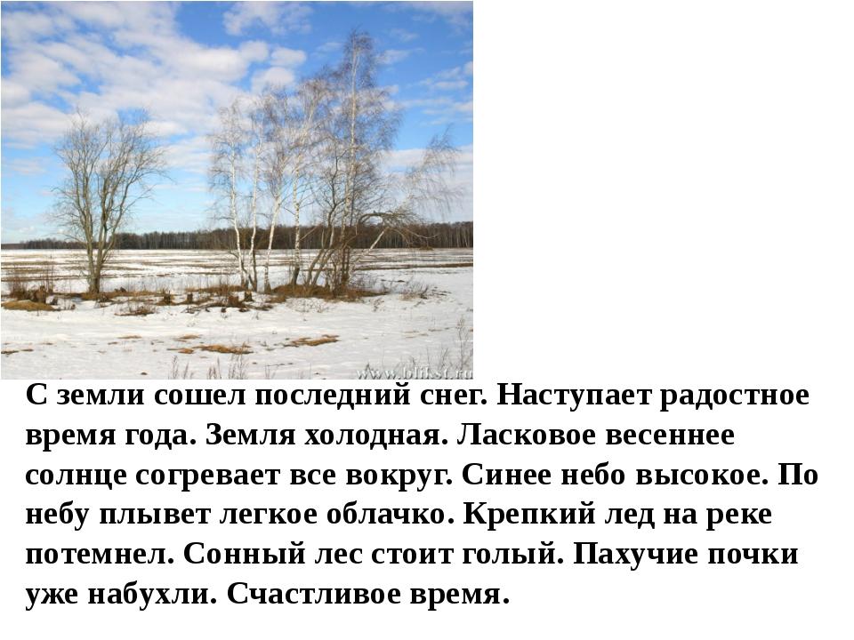 С земли сошел последний снег. Наступает радостное время года. Земля холодная....