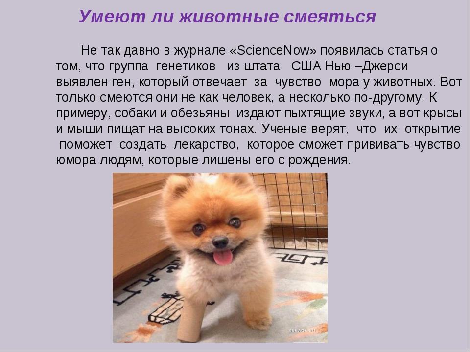 Умеют ли животные смеяться Не так давно в журнале «SciеnceNow» появилась ста...