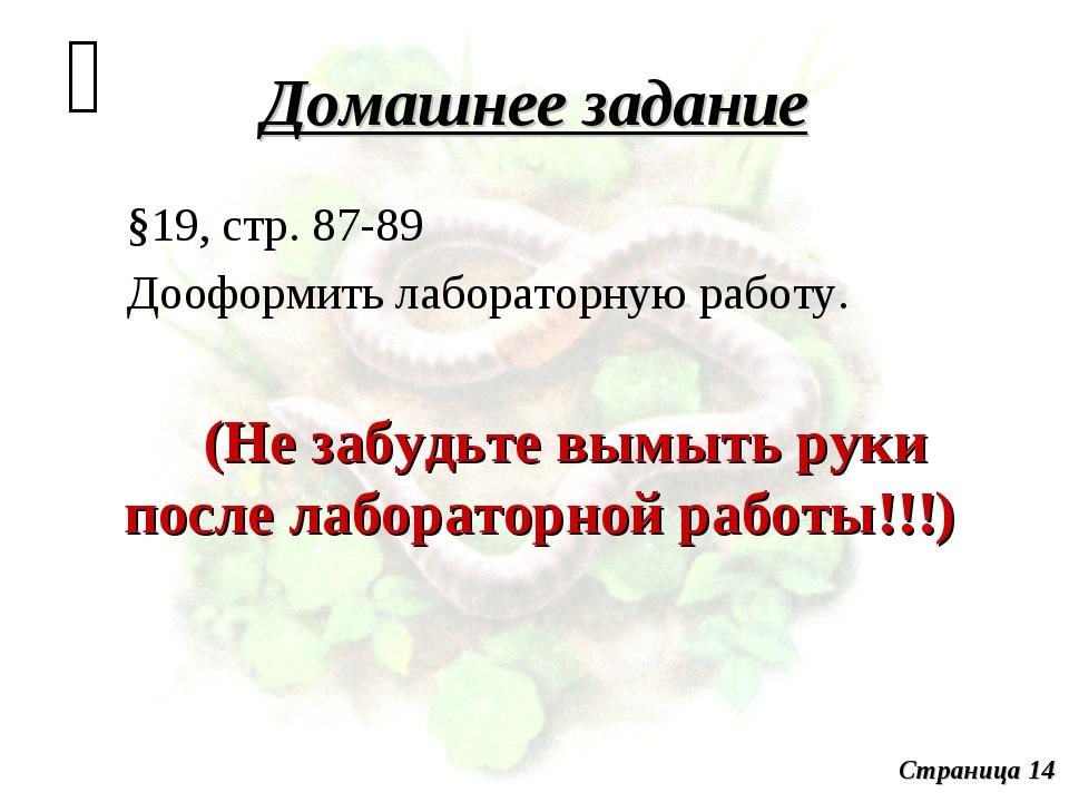 Домашнее задание §19, стр. 87-89 Дооформить лабораторную работу. (Не забудьте...