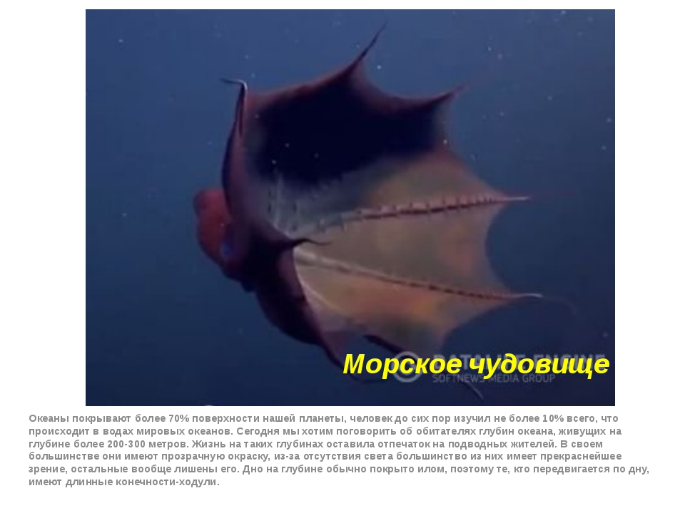 Морское чудовище Океаны покрывают более 70% поверхности нашей планеты, челове...