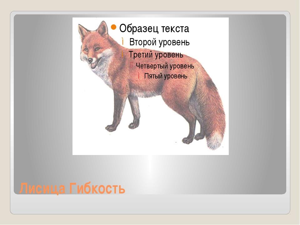 Лисица Гибкость