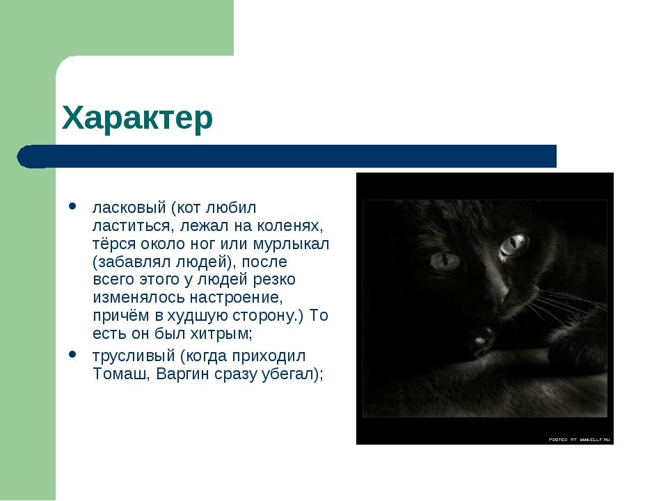 Характер ласковый (кот любил ластиться, лежал на коленях, тёрся около ног или...