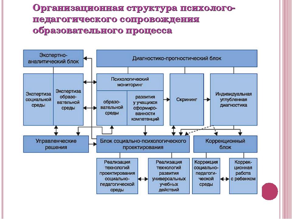 Организационная структура психолого-педагогического сопровождения образовател...