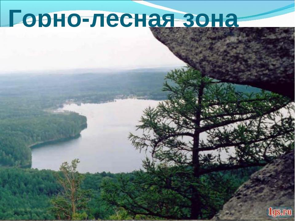 Горно-лесная зона
