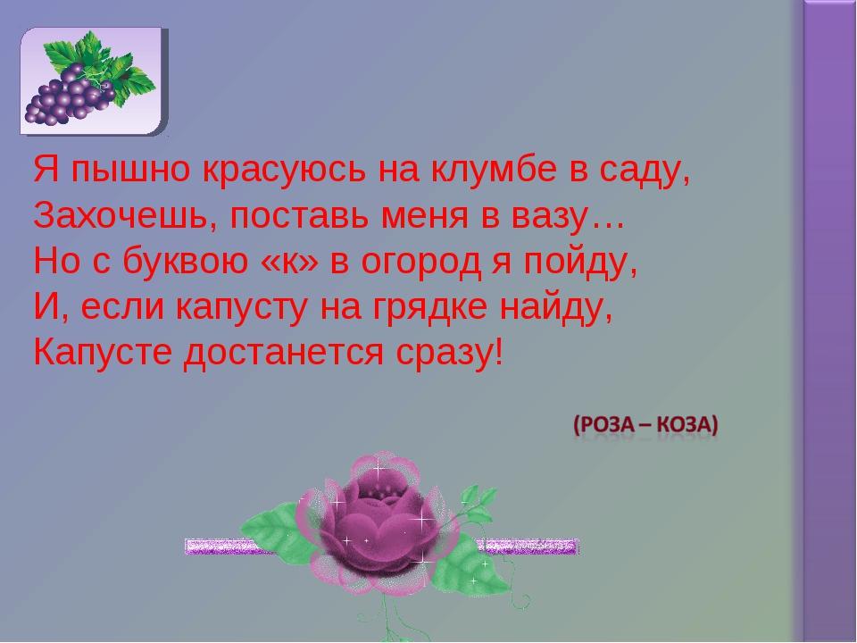 Я пышно красуюсь на клумбе в саду, Захочешь, поставь меня в вазу… Но с буквою...