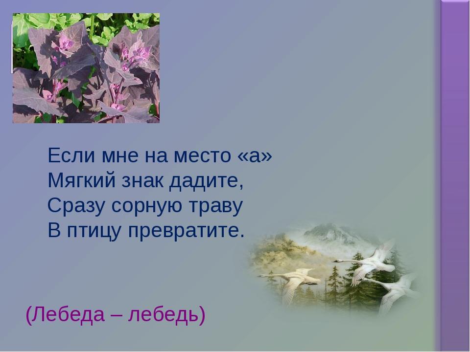 Если мне на место «а» Мягкий знак дадите, Сразу сорную траву В птицу преврати...