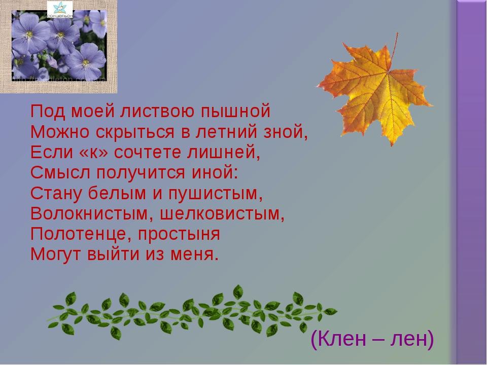 Под моей листвою пышной Можно скрыться в летний зной, Если «к» сочтете лишней...