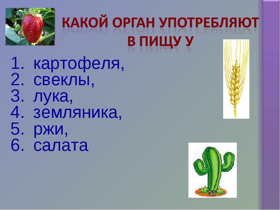 картофеля, свеклы, лука, земляника, ржи, салата
