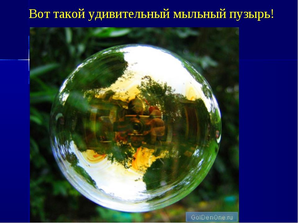 Вот такой удивительный мыльный пузырь!