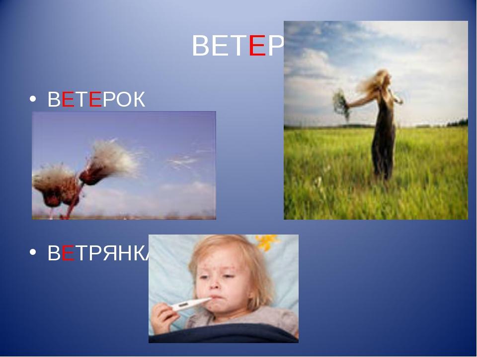 ВЕТЕР ВЕТЕРОК ВЕТРЯНКА