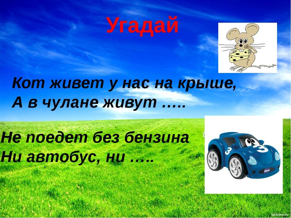 Угадай Кот живет у нас на крыше, А в чулане живут ….. Не поедет без бензина Н...
