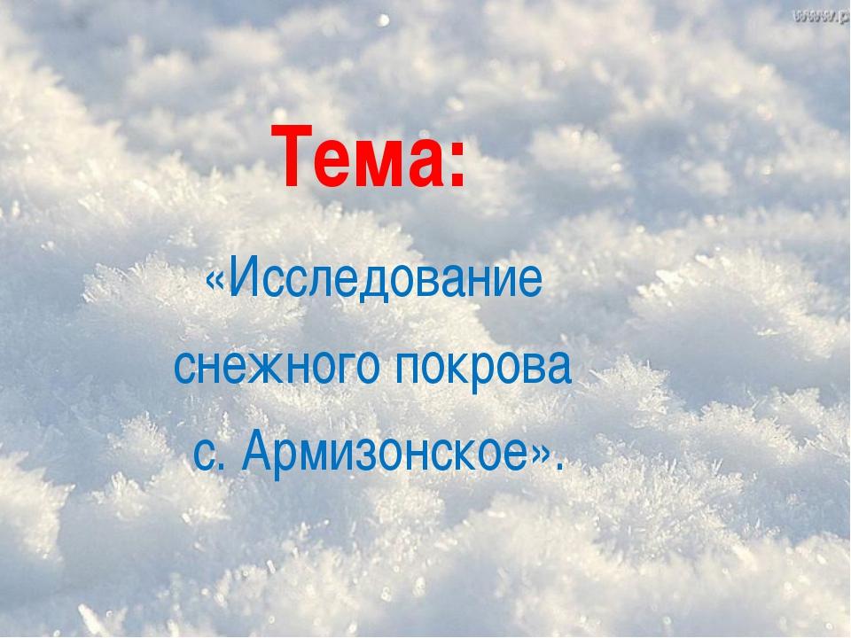 Тема: «Исследование снежного покрова с. Армизонское».
