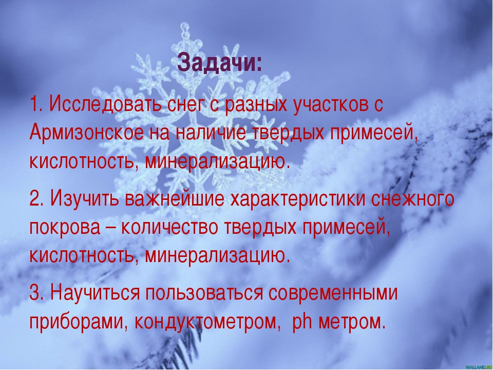Задачи: 1. Исследовать снег с разных участков с Армизонское на наличие тверды...