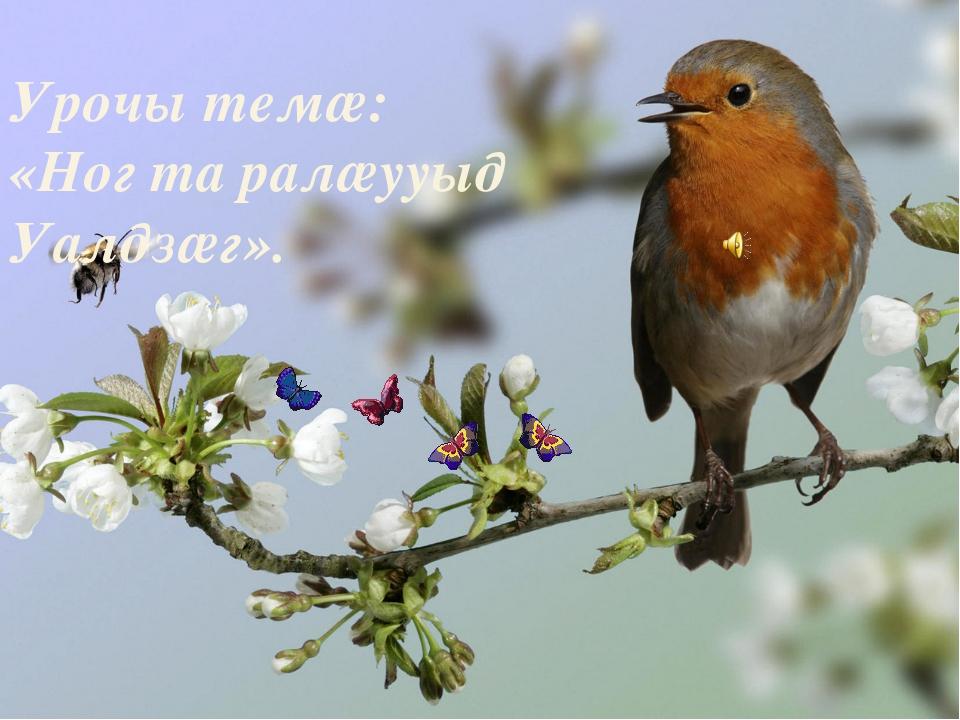 Урочы темæ: «Ног та ралæууыд Уалдзæг».