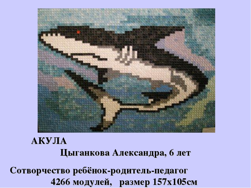АКУЛА Цыганкова Александра, 6 лет Сотворчество ребёнок-родитель-педагог 4266...