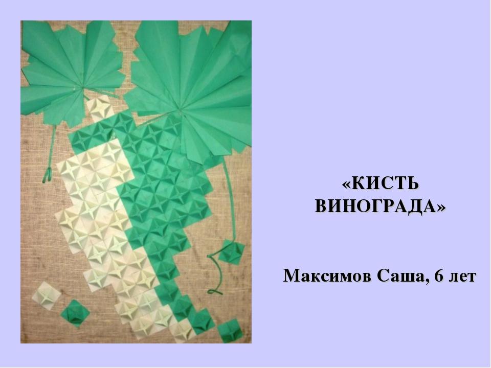 «КИСТЬ ВИНОГРАДА» Максимов Саша, 6 лет