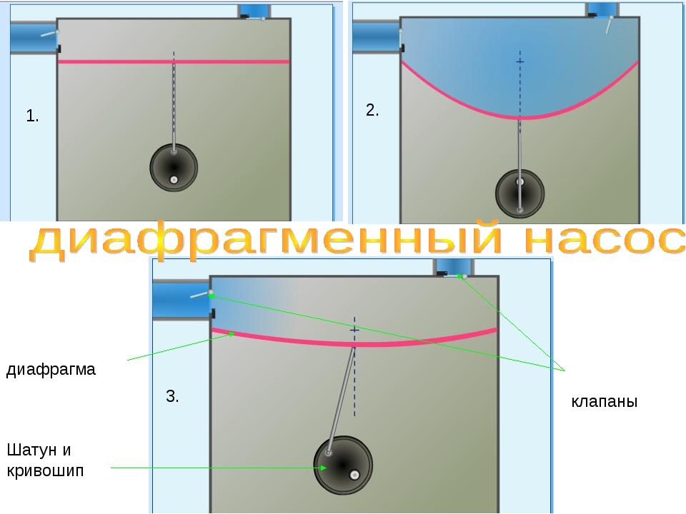 1. 2. 3. клапаны диафрагма Шатун и кривошип