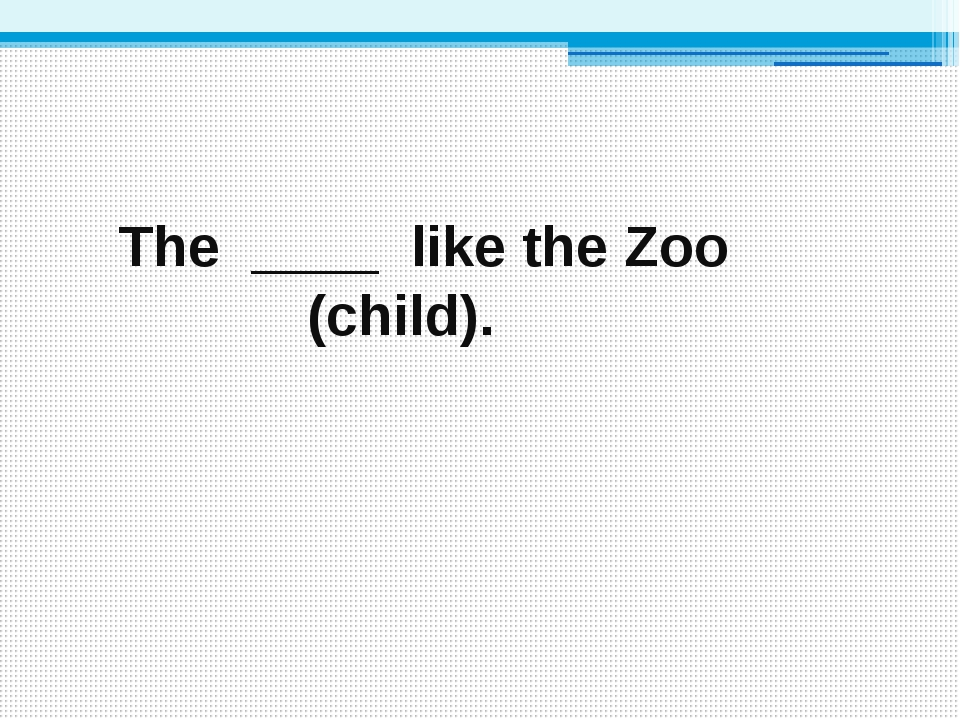 The ____ like the Zoo (child).