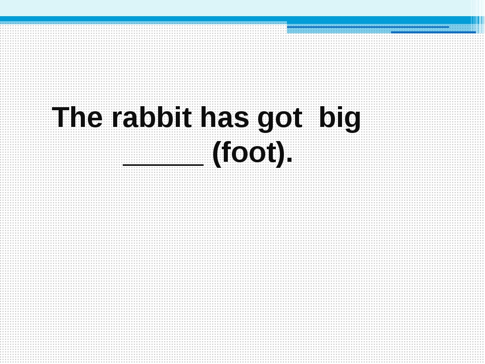 The rabbit has got big _____ (foot).