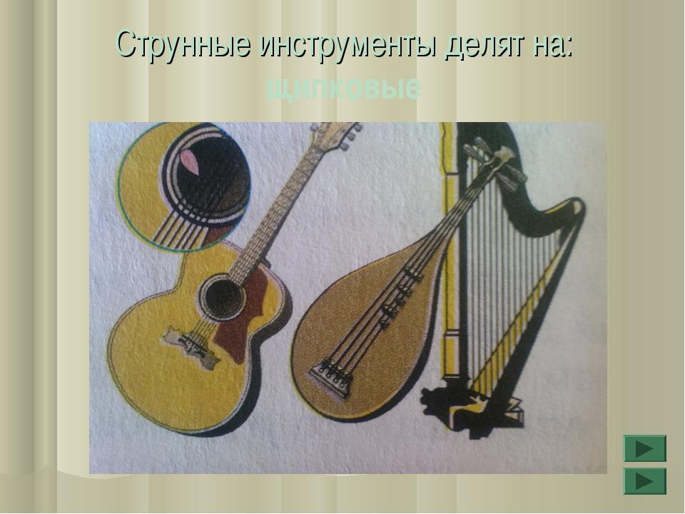 Струнные инструменты делят на: щипковые