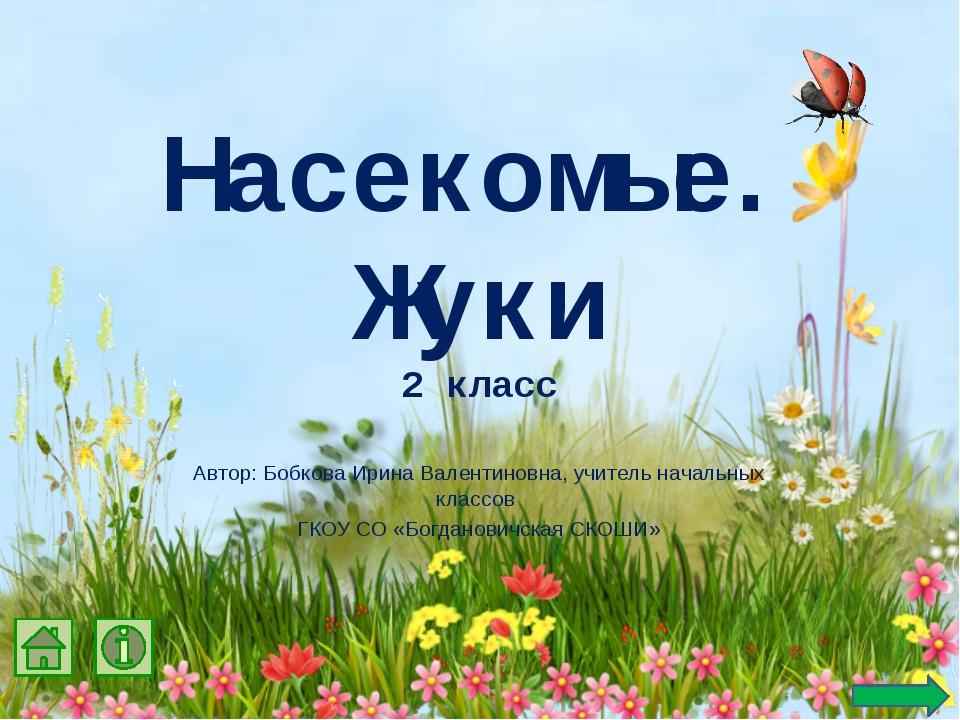 Насекомые. Жуки 2 класс Автор: Бобкова Ирина Валентиновна, учитель начальных...
