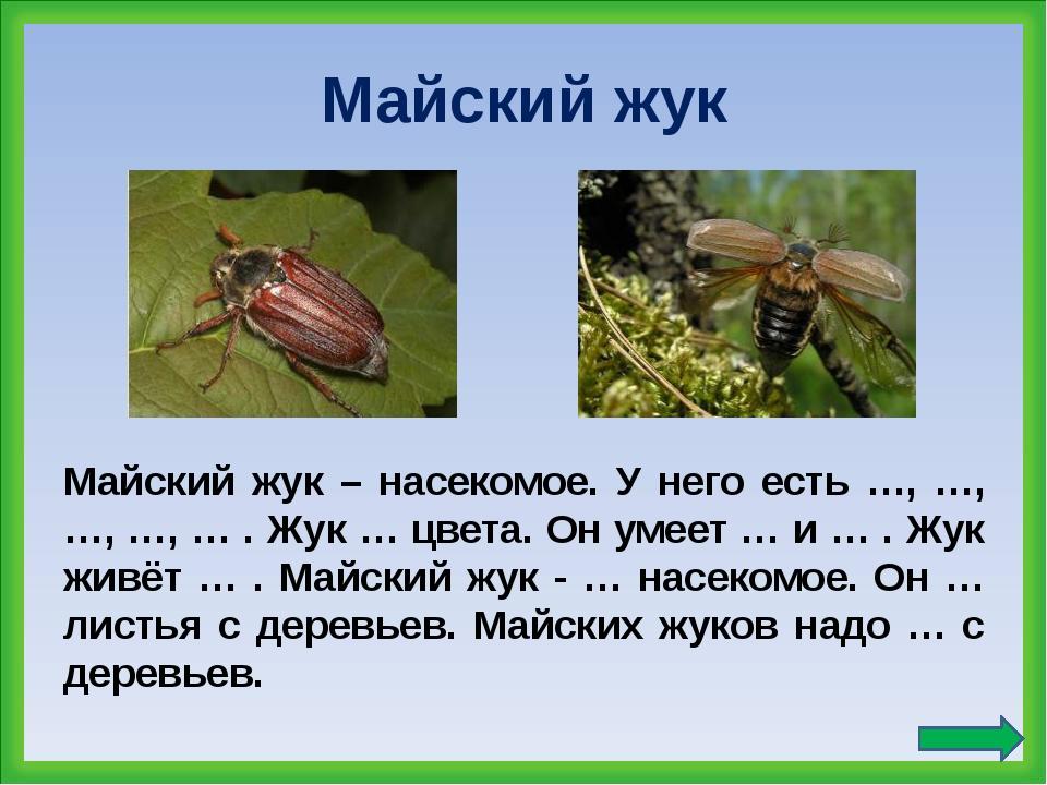 Майский жук Майский жук – насекомое. У него есть …, …, …, …, … . Жук … цвета....