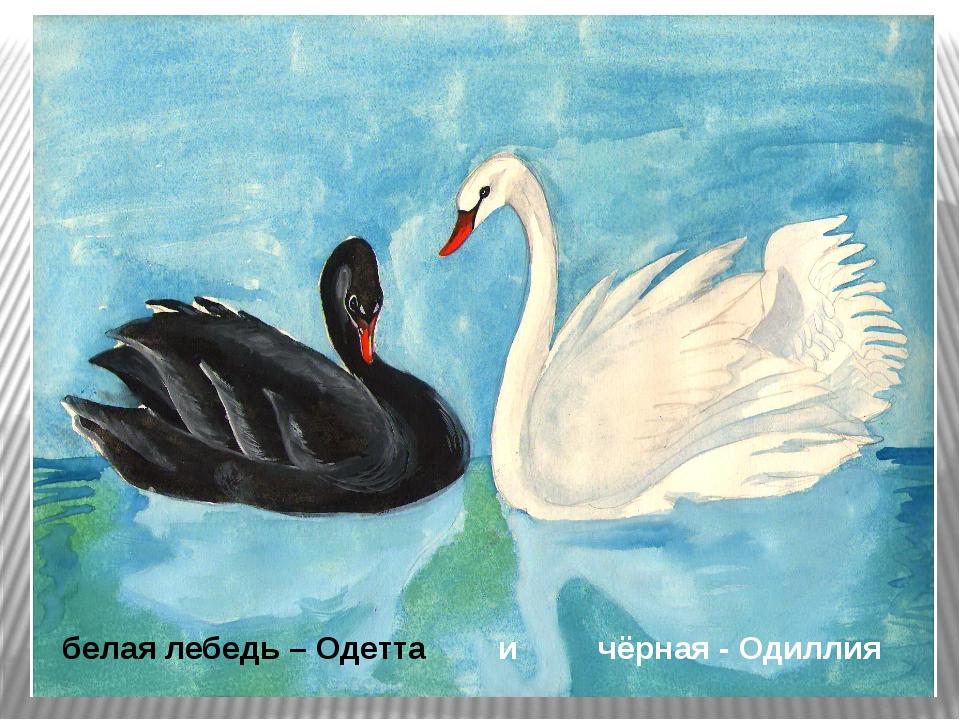 белая лебедь – Одетта и чёрная - Одиллия