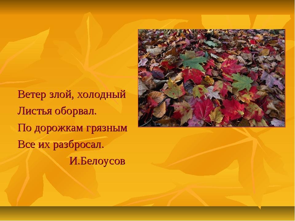 Ветер злой, холодный Листья оборвал. По дорожкам грязным Все их разбросал. И...
