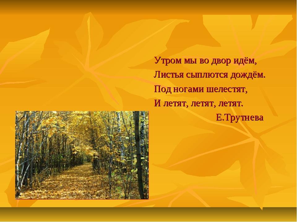 Утром мы во двор идём, Листья сыплются дождём. Под ногами шелестят, И летят,...