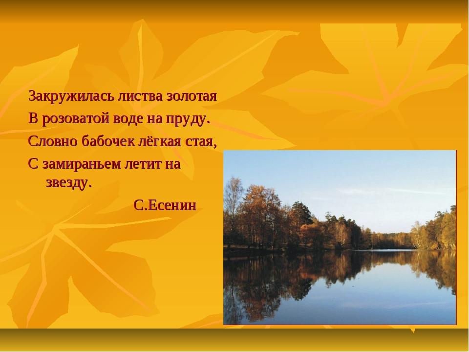 Закружилась листва золотая В розоватой воде на пруду. Словно бабочек лёгкая с...