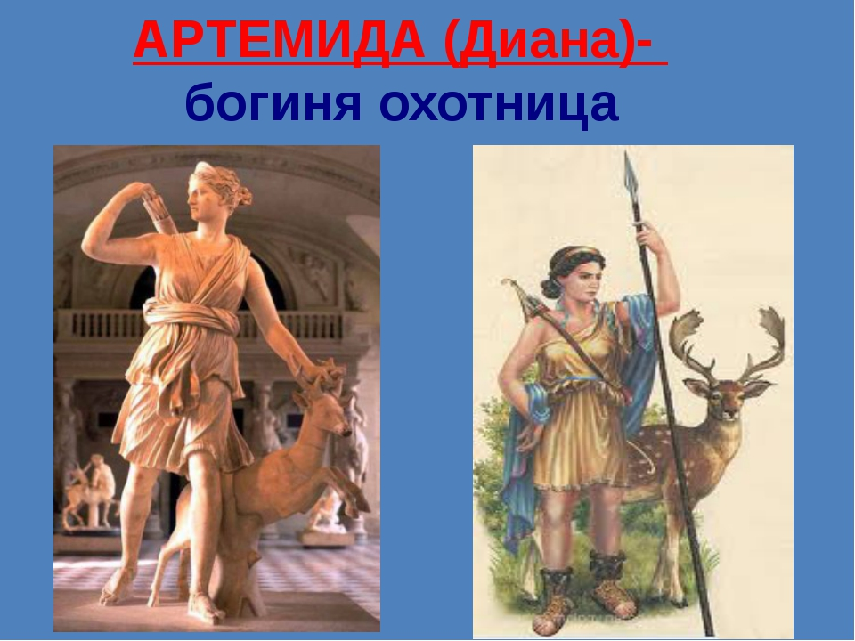 АРТЕМИДА (Диана)-  богиня охотница